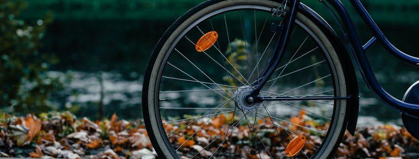 La evolución de la bicicleta
